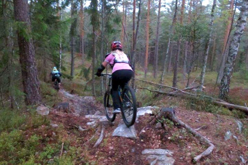 Jentekveld Kjerringåsen 2018 trail - Foto Hanne Holmstrøm Karlsen 1400x933