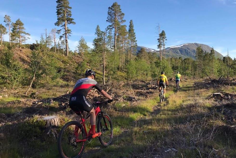 Sykkelenern course - Arrangøren 1400x933