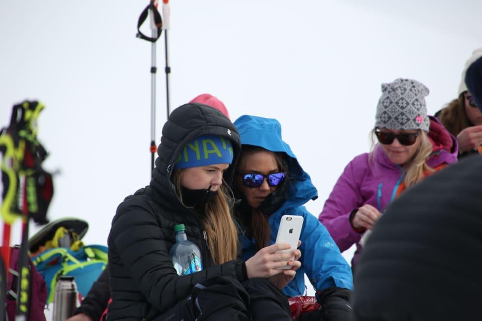 Noen velger å gå turer på egenhånd, andre går guidede turer fra festivalmenyen. Foto: Håvard Myklebust
