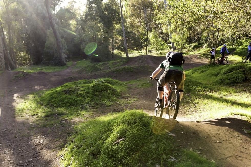 Trails 1 - Thomas B Svendsen 1400x933