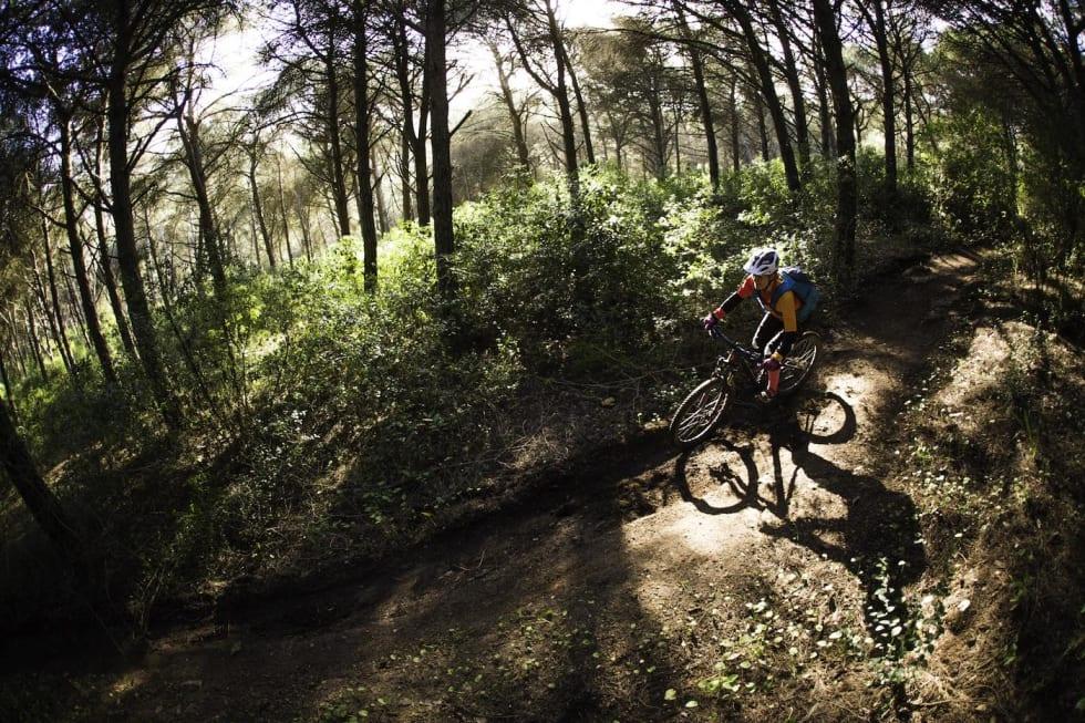 Trails - Thomas B Svendsen 1400x933 copy