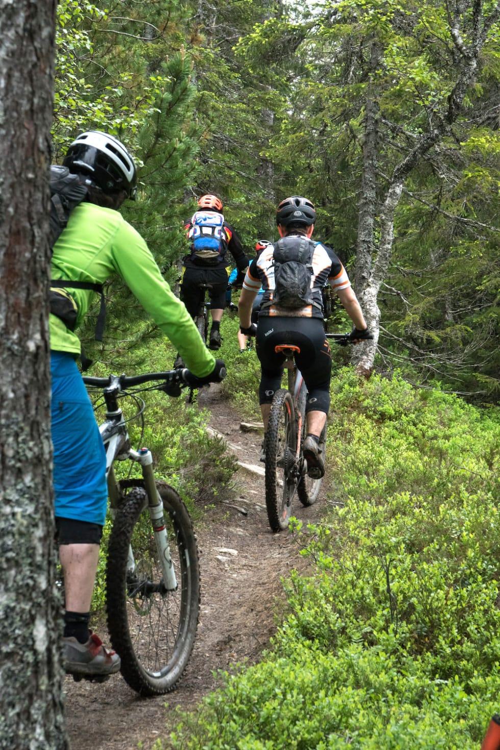 TRD Stisykkelfestival trails 1000x1500