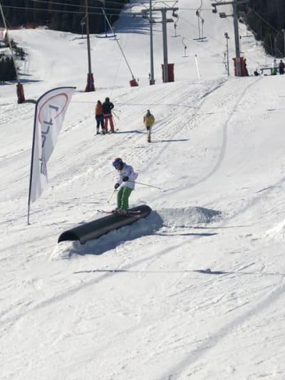 FLINKE KIDS: Småtassene i Ål dro på bra palmehelgen. Hele 80 kjørere fra seks til seksten deltok i Junior Påskeshredd i Ål skisenter.