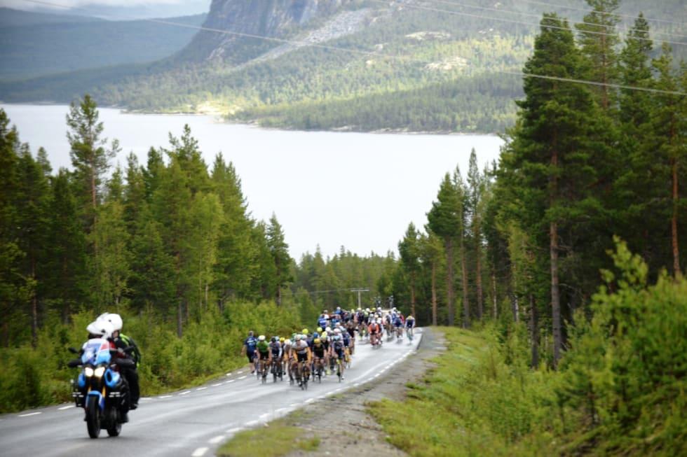 Tour de Hallingdal 2017  stage 2 men sr - Kent Murdoch 1400x933