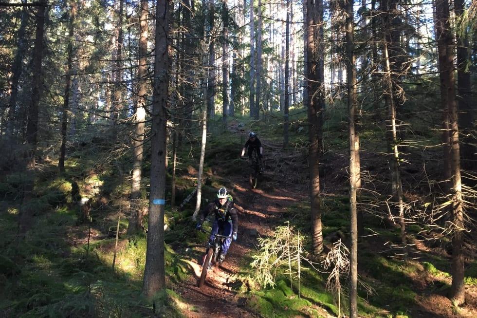 NOTS Follo fellestur Oct 29-17 trails - Trond Dyrnes 1400x933