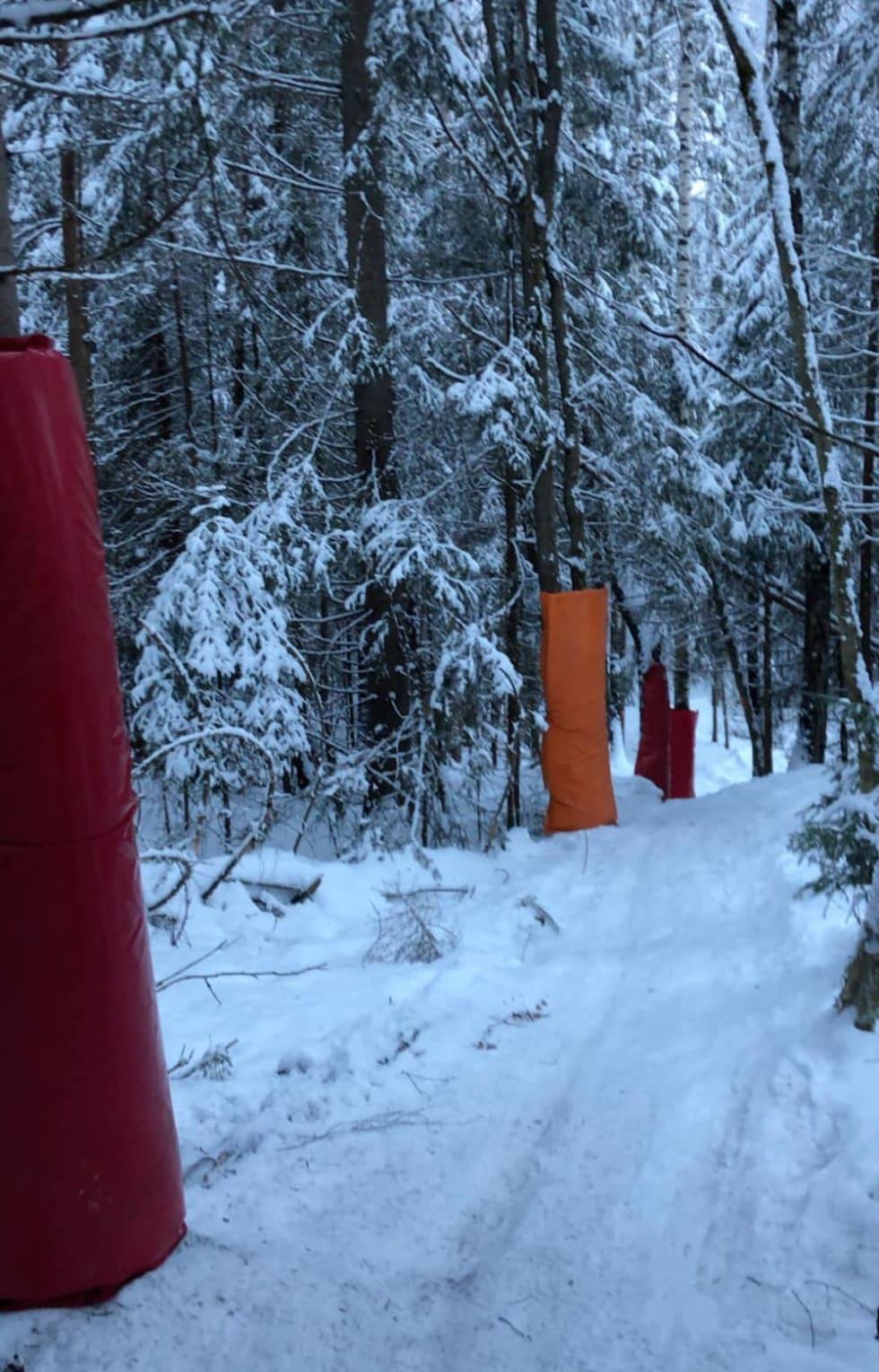 Tre mot en er feigt: Arrangøren gjorde sitt for å polstre utsatte steder i skogen. Det betyr mesteparten av den. Foto: Modum Challenge