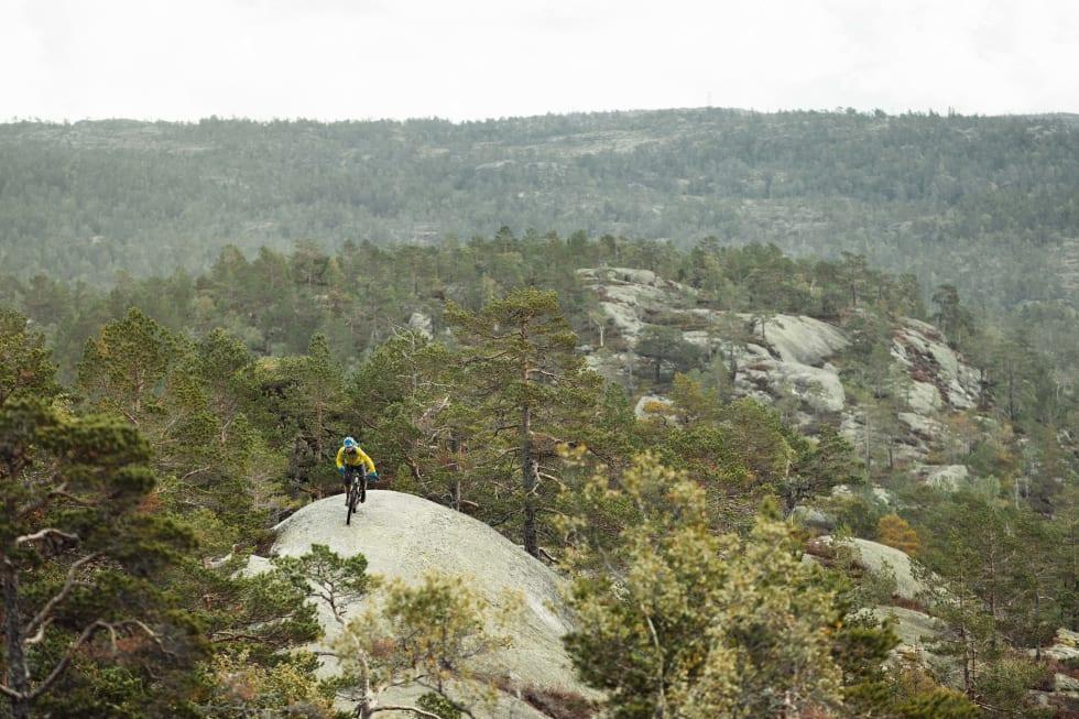OVER TOPPEN: En og annen gang kommer du deg over tretoppene og får utsikt over landskapet.