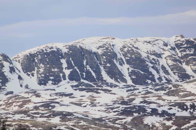 Fristende fjellside! Foto: Magnus Utkilen