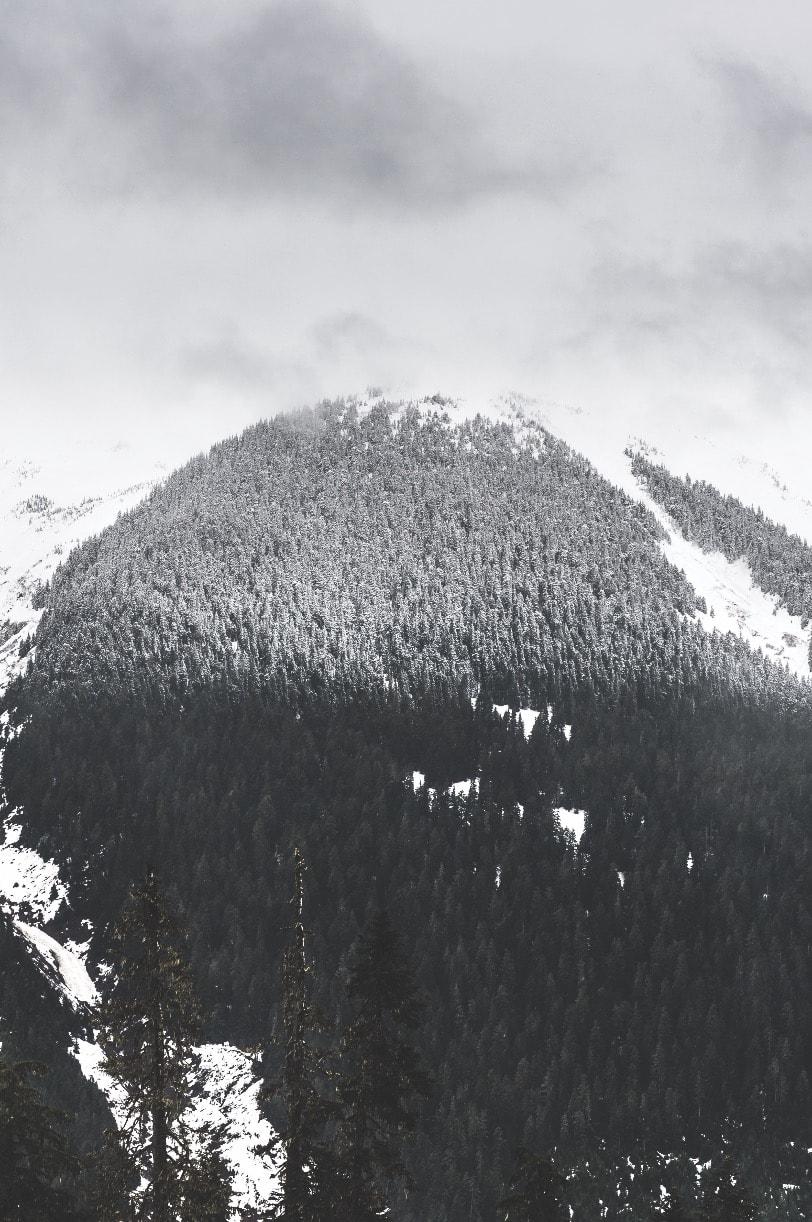 PUDDERGRENSEN: Varmere vintrene har de seneste årene gjort at forholdene ikke er de samme som for 10 år siden. Også i Canada. Her kalles det for pinapple express – varm luft som kommer fra vest og får puddergrensen til å krype oppover fjellene.