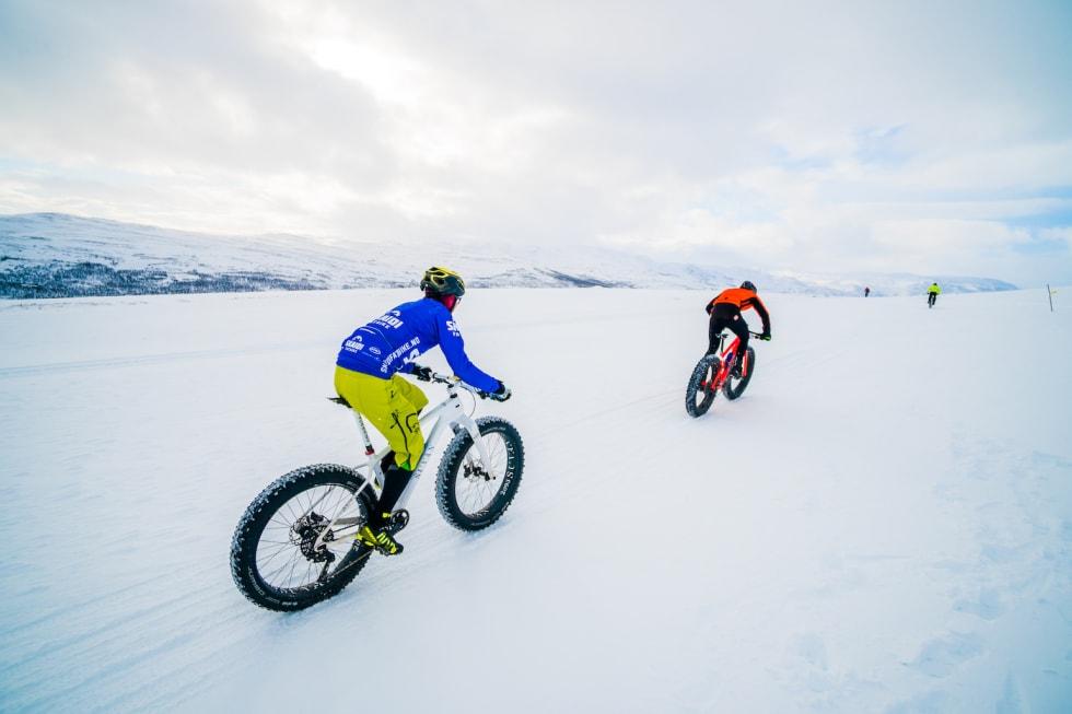Rittleder Odd Peder Wang-Norderud jager Vidar Olsen over vidda. Foto: Rino Engdal