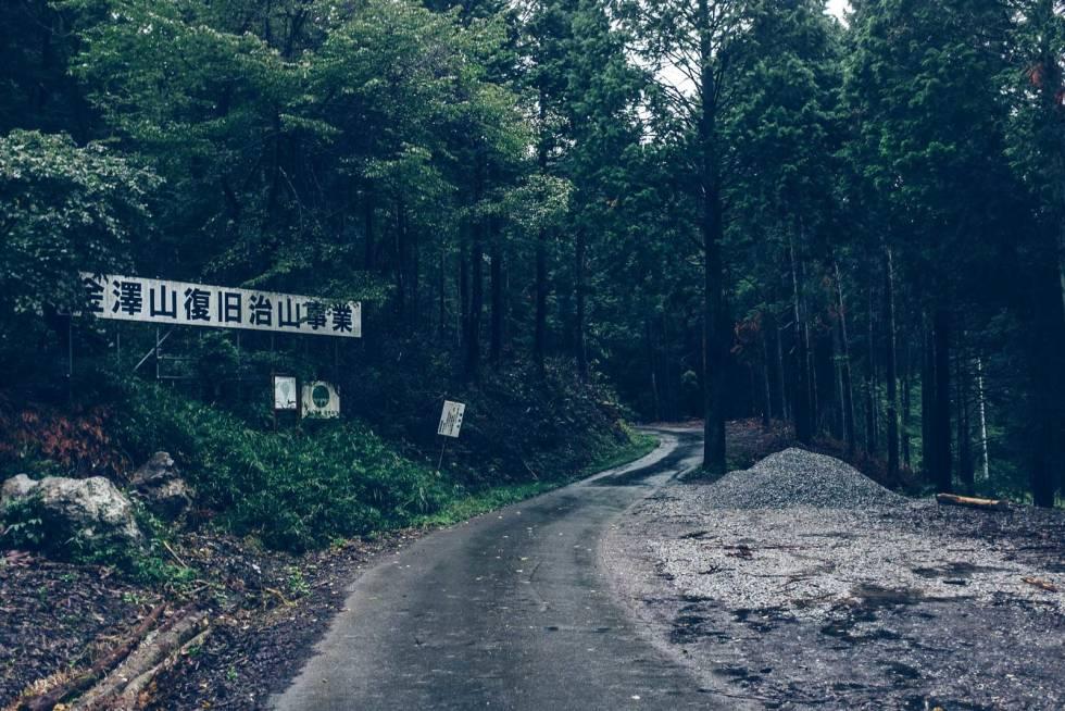 Rindo:  Små skogsveier som fører deg lenger og lenger inn i den mørke skogen og det ukjente Japan med skogsåndene som reiseleder.
