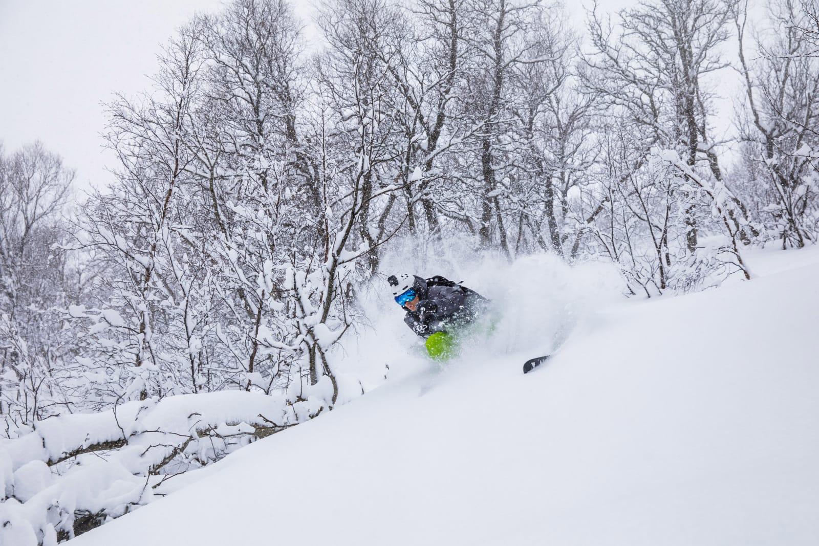 BONUSPUDDER: Primus motor Asbjørn Eggebø Næss fikk seg en solid dose pudder under skia på bonusdagen i Brandstadskogen. Bilde: Terje Aamodt