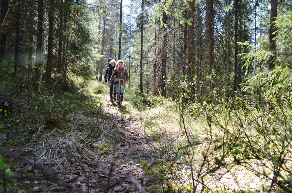GÅMODUS: Behandler du fjellskoene dine godt mellom turene, har de potensielt lang levetid. Klassiske fjellsko er laget i kraftige materialer som er enkle å vedlikeholde. Ved å skifte såle og lisser, eller tas med til skomaker som sannsynligvis vil kjenne igjen konstruksjonen i støvlene.