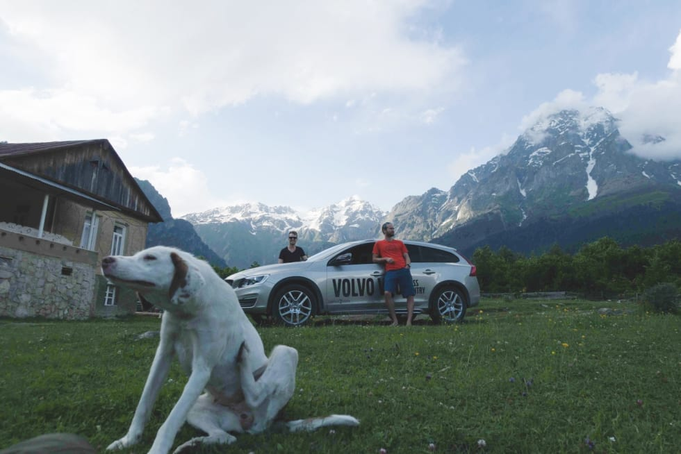 SKUR: Grand hotell Usbha i Svaneti byr på vakker natur og et variert dyreliv. Her illustrert med 3 kjøtere.