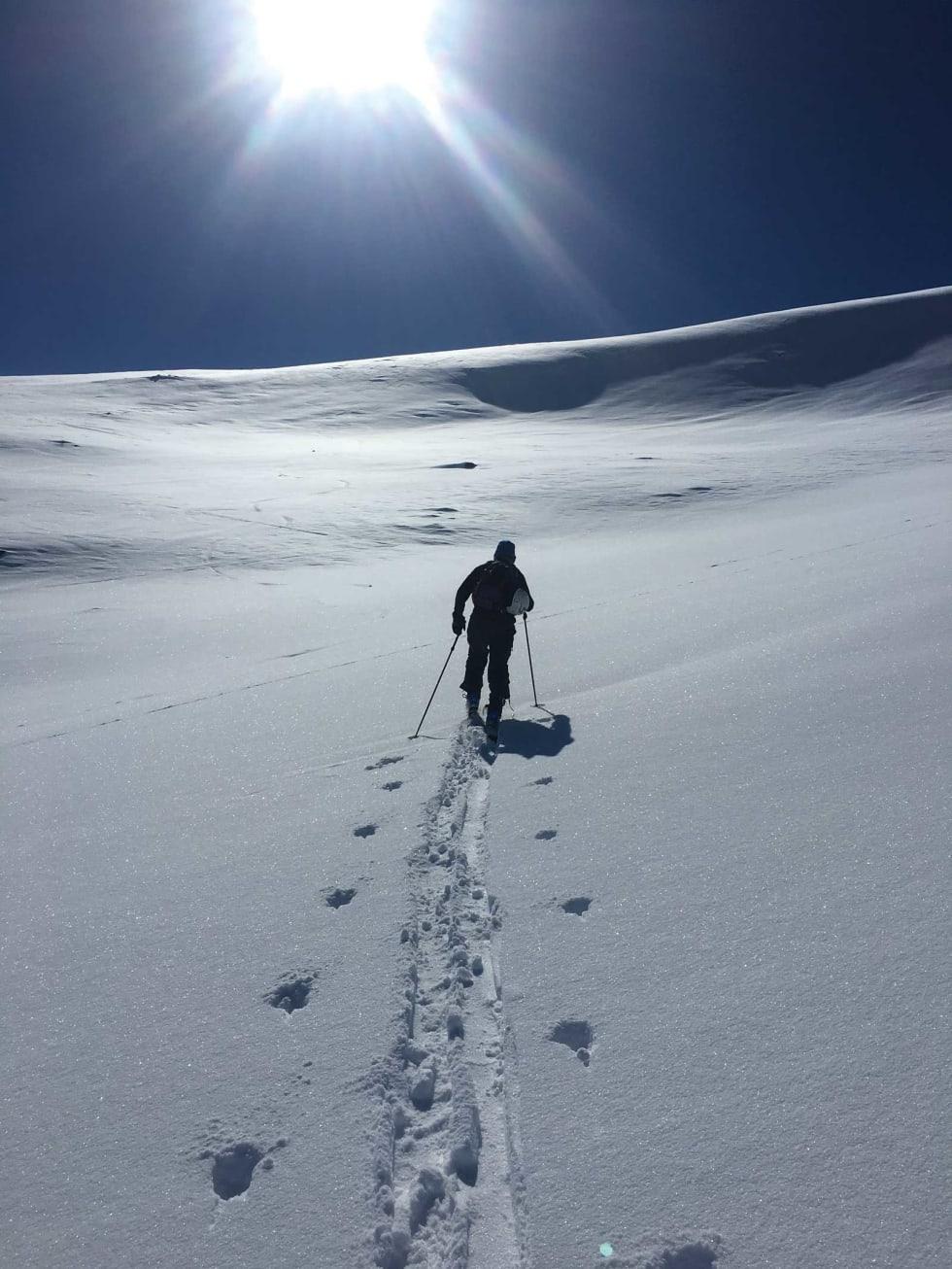 Puddersnø på vei mor den populære skitoppen som kalles 1609. Foto: Ole Kristian Strøm./ Trygge toppturer