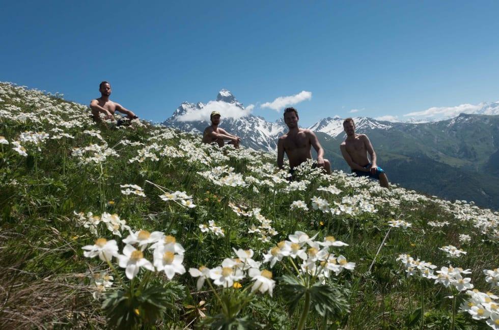 VÅRYR I SVANETI: Mt Ushba i bakgrunnen byr på respektabel alpinklatring og er omkranset av grønne blomsterenger. Og våryre bilturrister fra skandinavia.