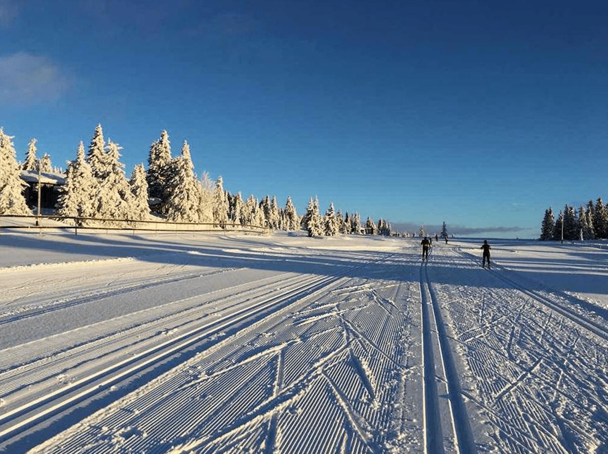 Skjermbilde 2017-01-05 kl. 10.32.04