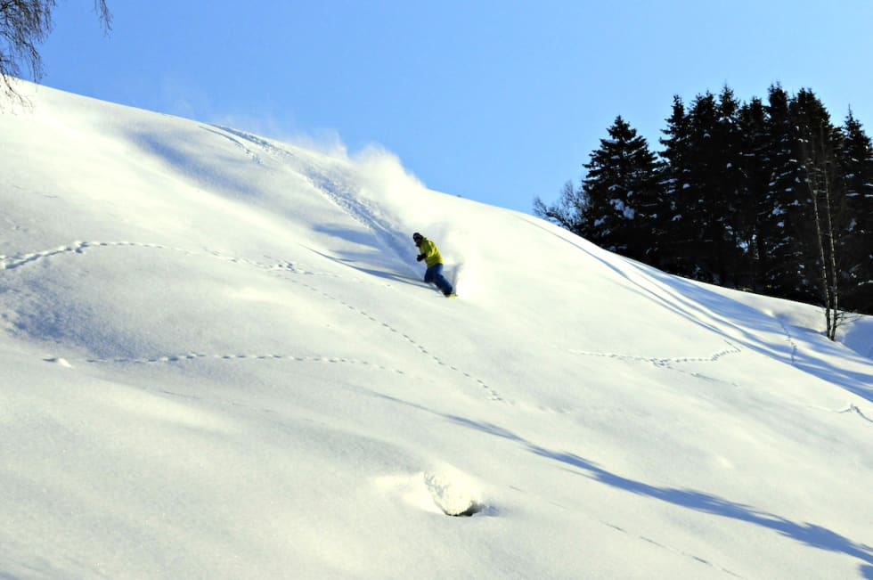 DUMP: Når du har lest denne guiden er du også klar til snødump. Her på Hylland.
