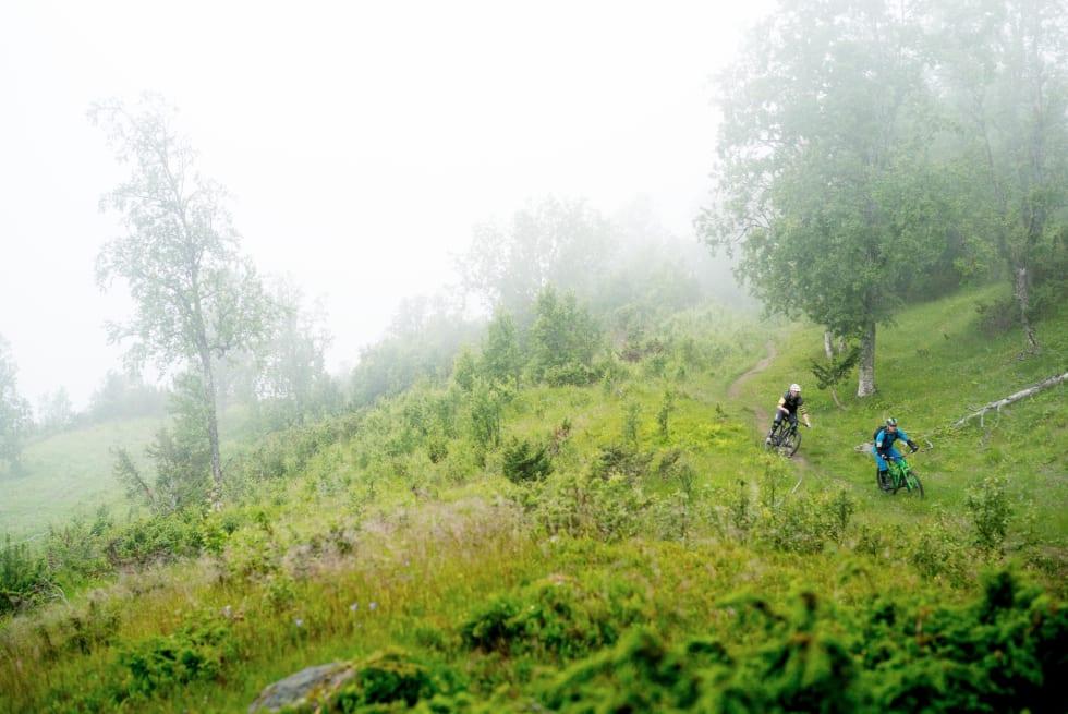 FLYTSTIER: Saueholdet på Blåfjellet har resultert i hundrevis av lengde- og høydemeter med smale, undulerende stier.