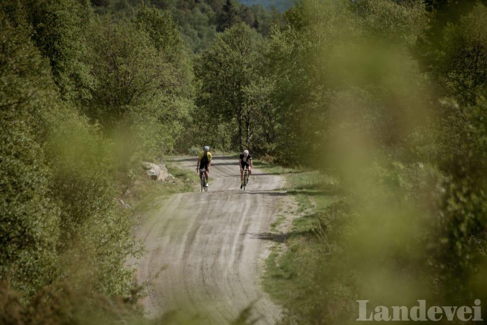 I BJERKESKOGEN: Marius Nilsen (t.v) og Gjermund Jordheim har ennå langt igjen til toppen.
