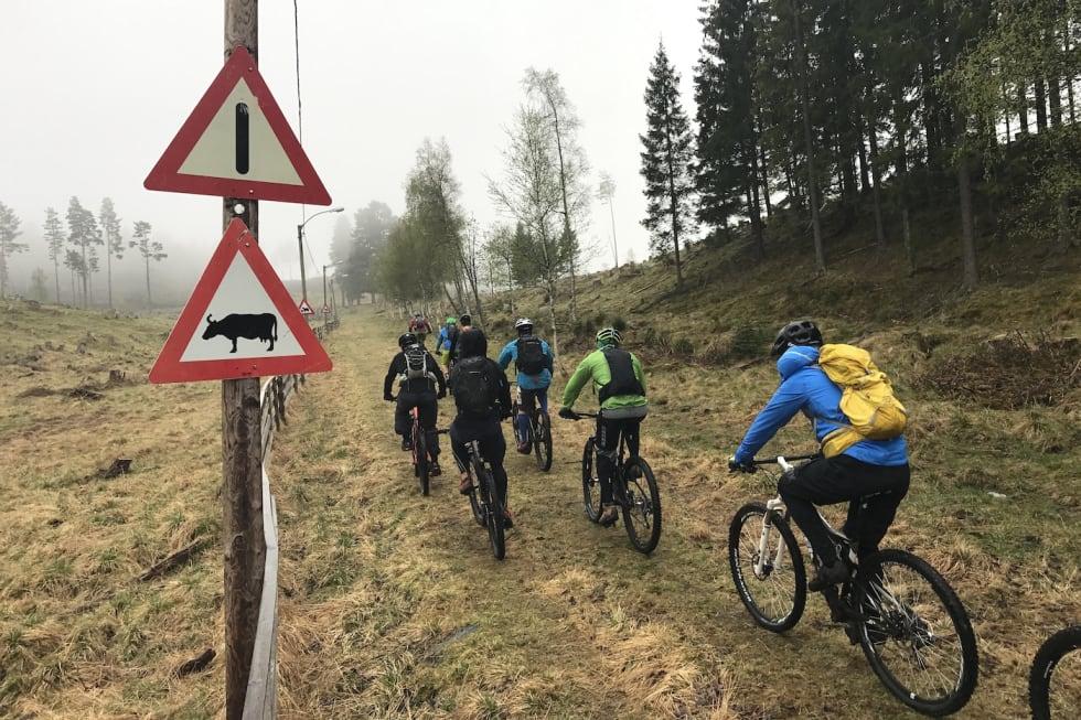 May 22-17 NOTS Lillehammer 4- Asgeir Linberg 1400x933