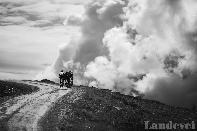 TATT AV VINDEN: Anders, Peter og Gjermund gjør som de har sett på naturprogrammer, holder seg tett i kampen mot vinden.