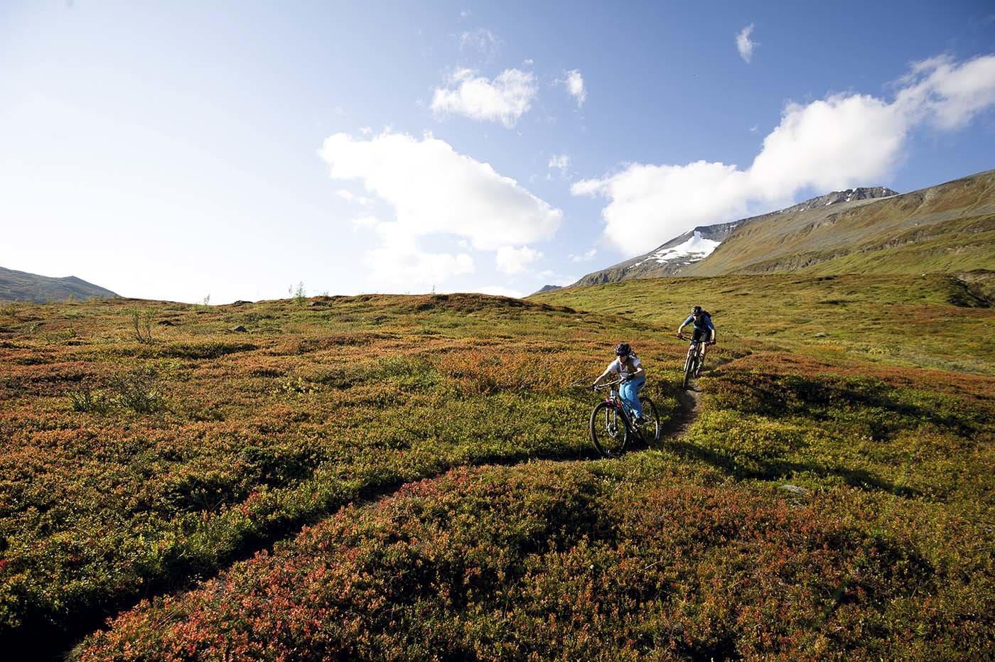 SNAUFJELL: Over tregrensen lever Lyngen opp til navnet sitt. Henriette Jordheim og Martin Farrell svever lavt på vei ned.