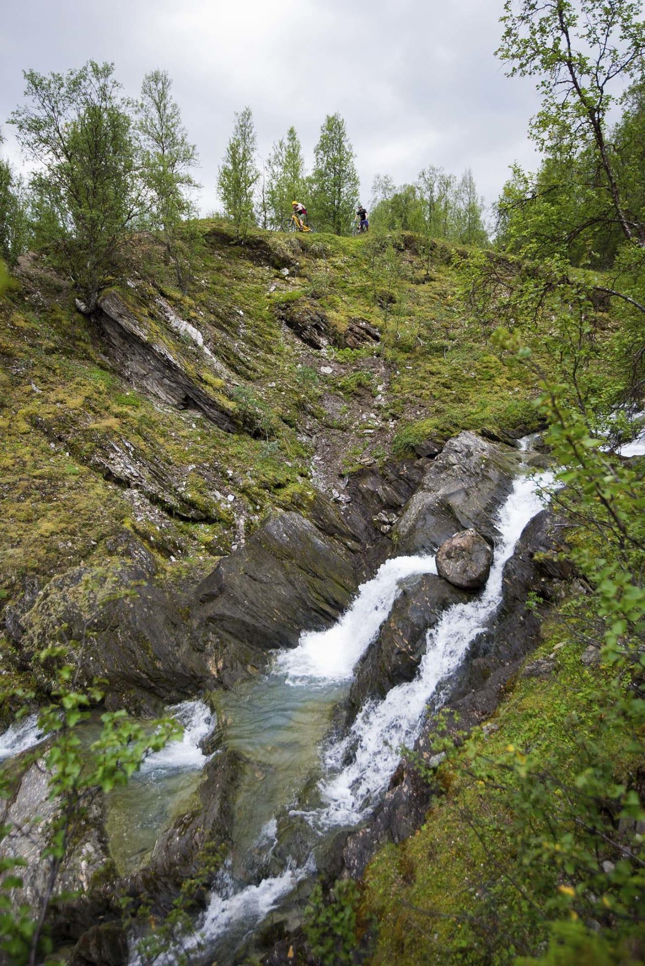 IKKE SE NED: Stien fra Rottenvikfossen følger elven store deler av turen ned, også der elven går i gjel.