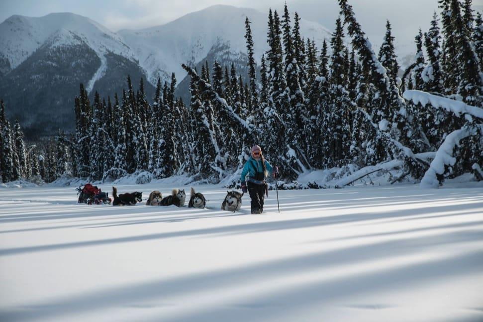Friluftsblogger Tonje Blomseth tok et oppgjør med friluftsbransjen, som hun synes er på vei til å bli en striglet og til tider kunstig arena på sosiale medier. Her på vei hjem fra oppholdet i Yukon hvor hun levde ut pelsjegerdrømmen, sammen med hundene og samboeren. Foto: Per Anders Eira