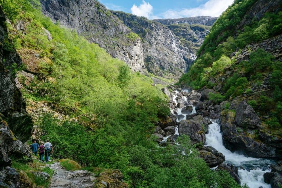 RIKT: Det er grønt og frodig i Aurlandsdalen. 20.000  fotturister går stien hvert år.