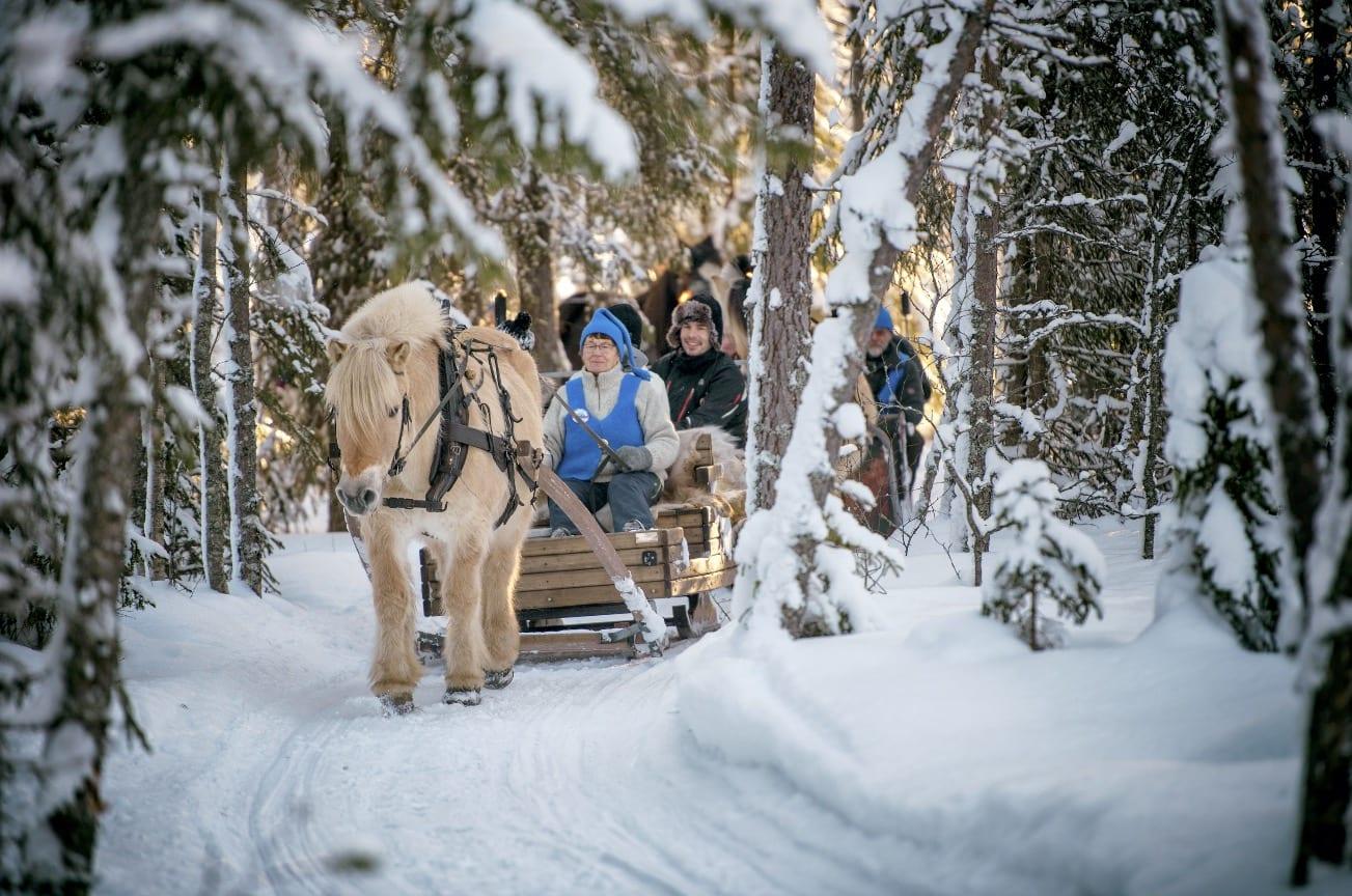 KANEFART: Det kan bli kaldt i Trysil, men å sitte tett bak en slede inni Trysil-skogen kan det bli ganske trivelig likevel. Foto: Hans-Martin Nysæter