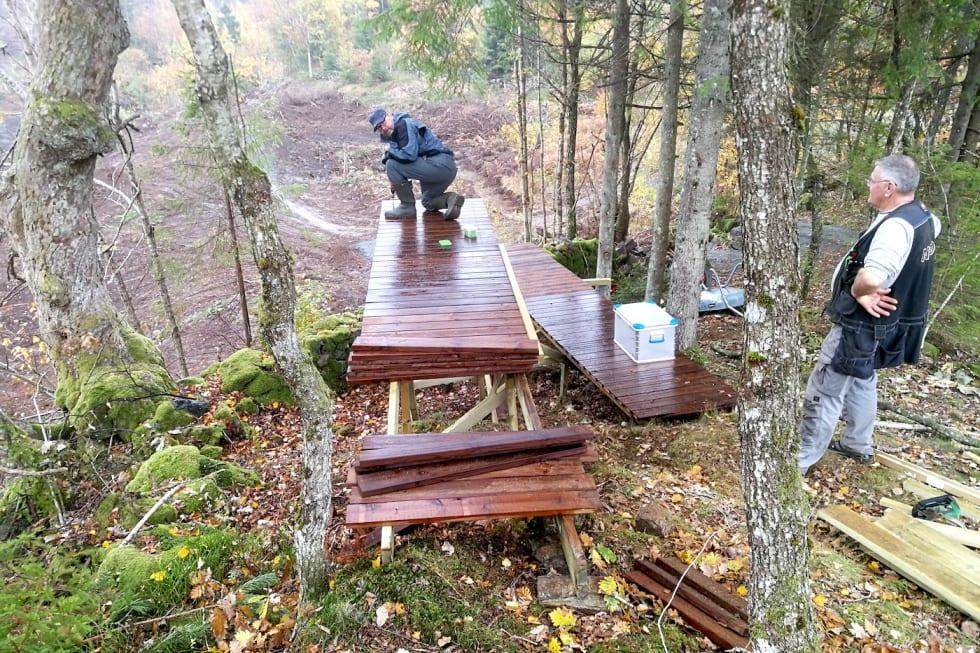 Tungvekteren - park dugnad - Foto Steinar Ytrehus 1400x933