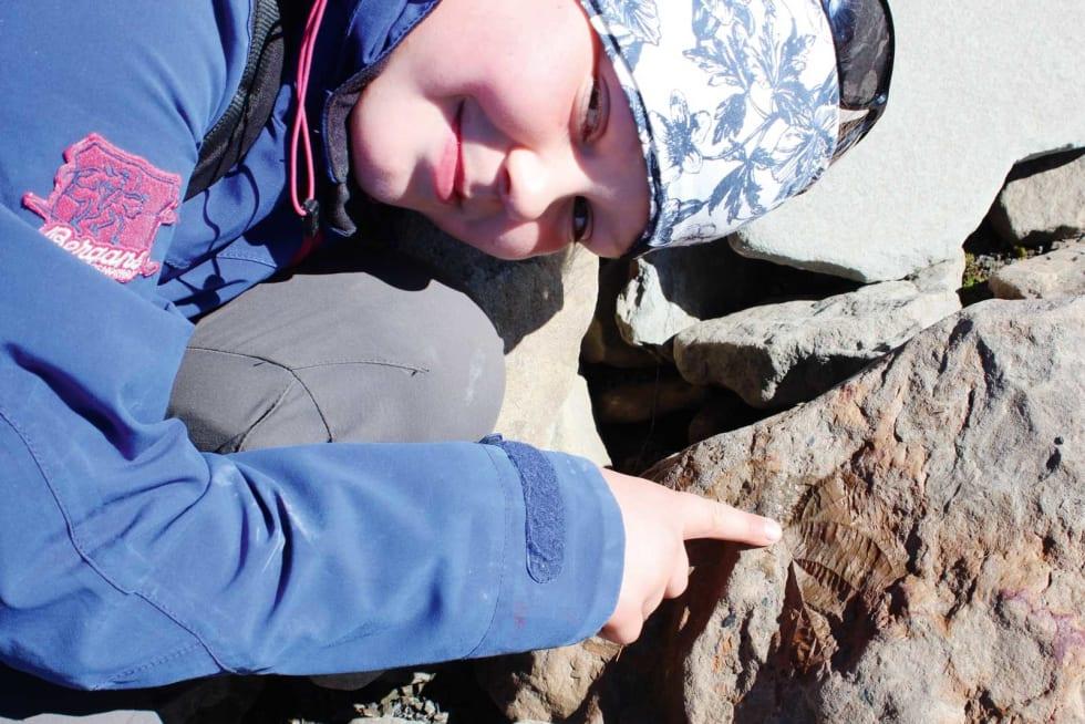 FUNN: Selma fant en flott fossil som dessverre var alt for stor til å få med i ryggsekken.