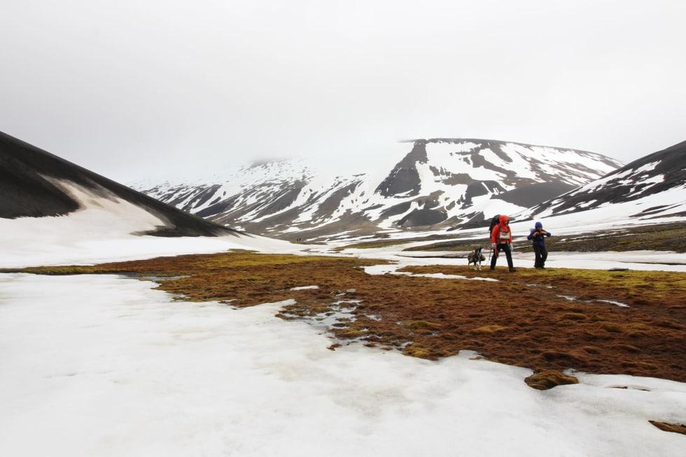 ARKTISK: Sommer på Svalbard er ikke helt som hjemme.
