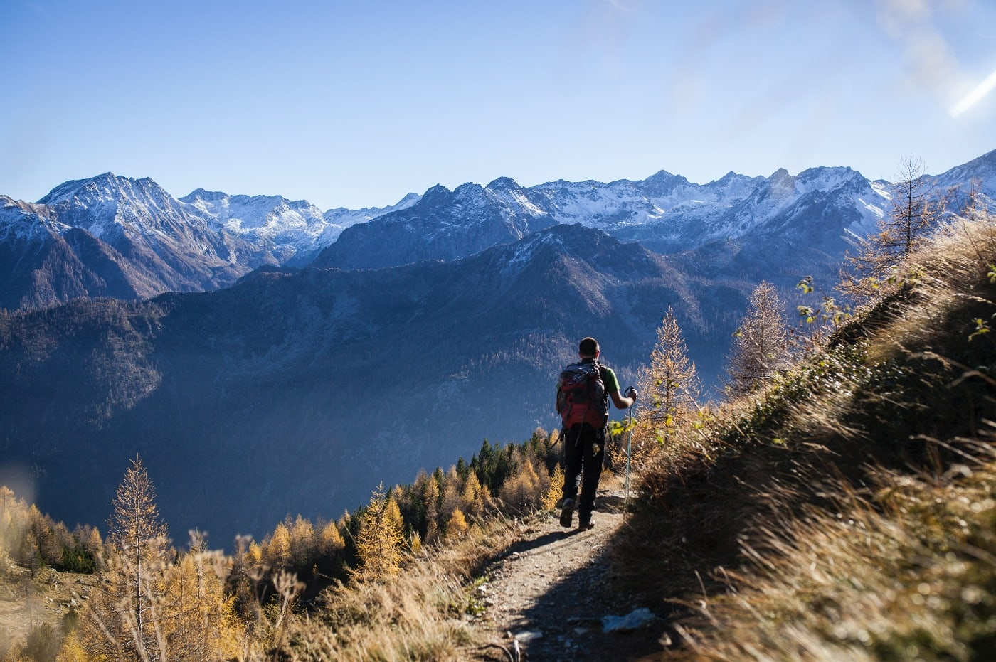 FRODIG: Lenger ned i dalen, der sola varmen og snøen ikke har lagt seg enda, blomstrer det fremdeles.