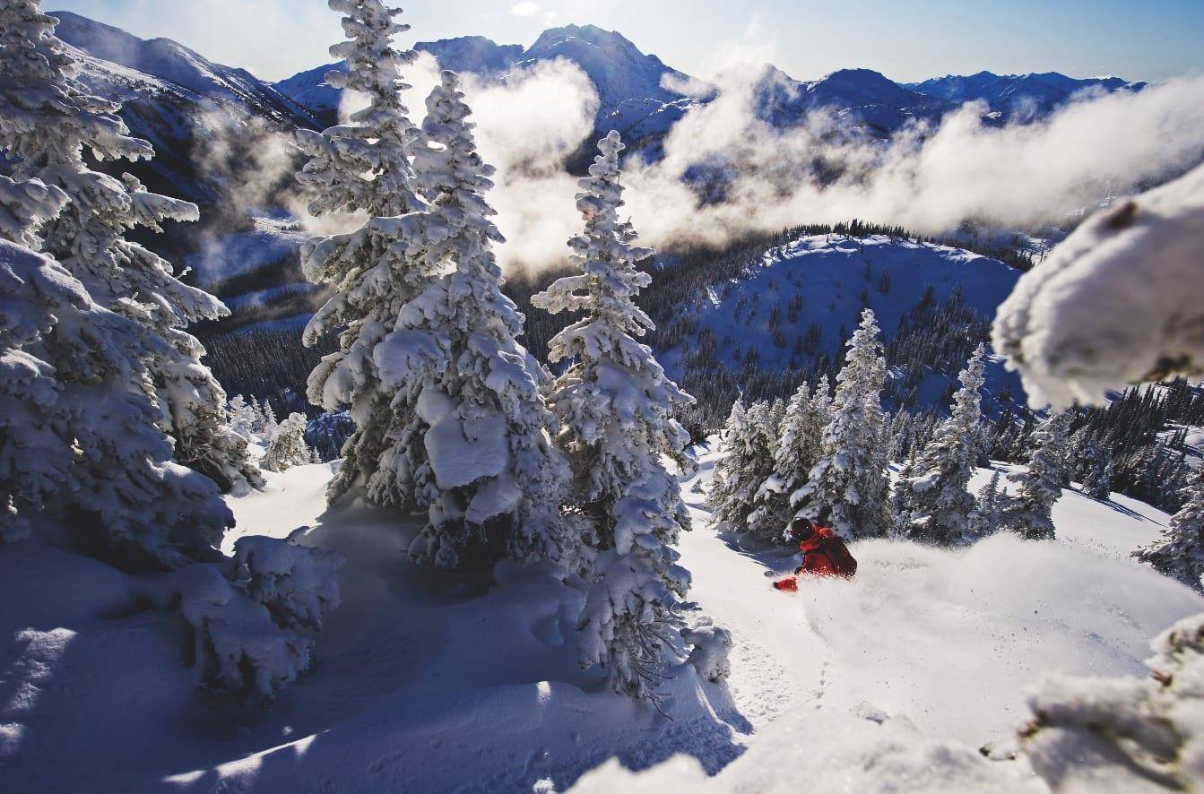 FINN DIN LINJE: Når Backcountry Snowcats sier at de har bra skogskjøring, overdriver de ikke.