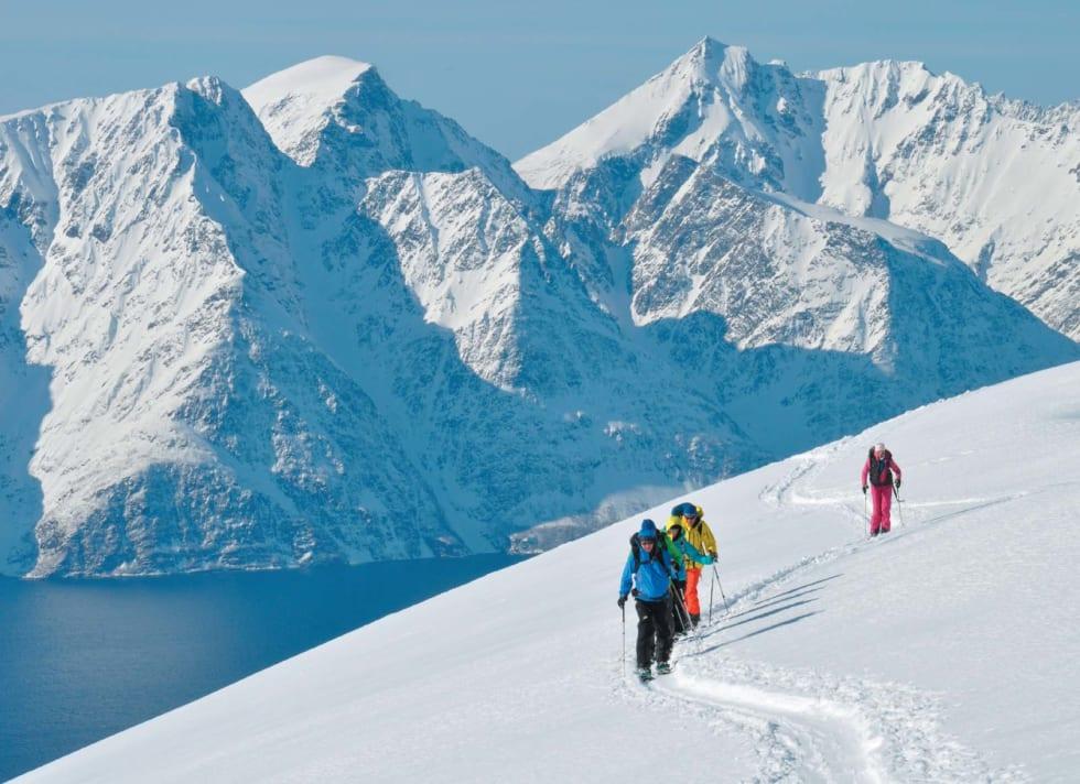 En trivelig gjeng splitboardere nærmer seg høyeste punkt på Storhaugen. Med magiske Lyngsalpene kulisser i bakgrunnen. Foto: Espen Nordahl. / Toppturer i Troms.