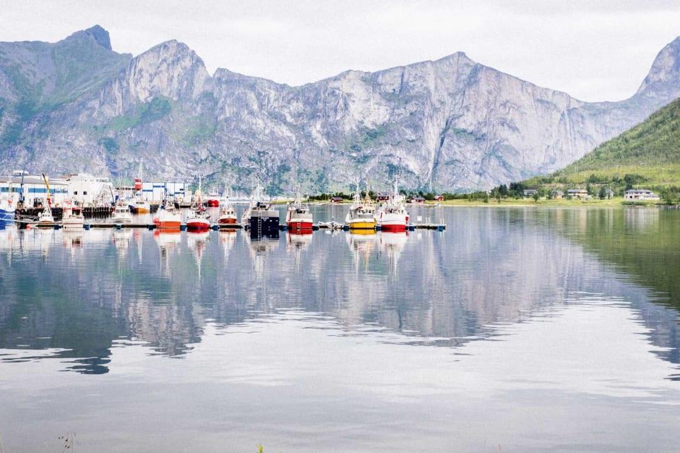 FISKETUR: I Senjahopen ligger fiskebåtene på rekke og rad. I Bakgrunnen ruver en knivskarp og nesten ti kilometer lang fjellrygg.