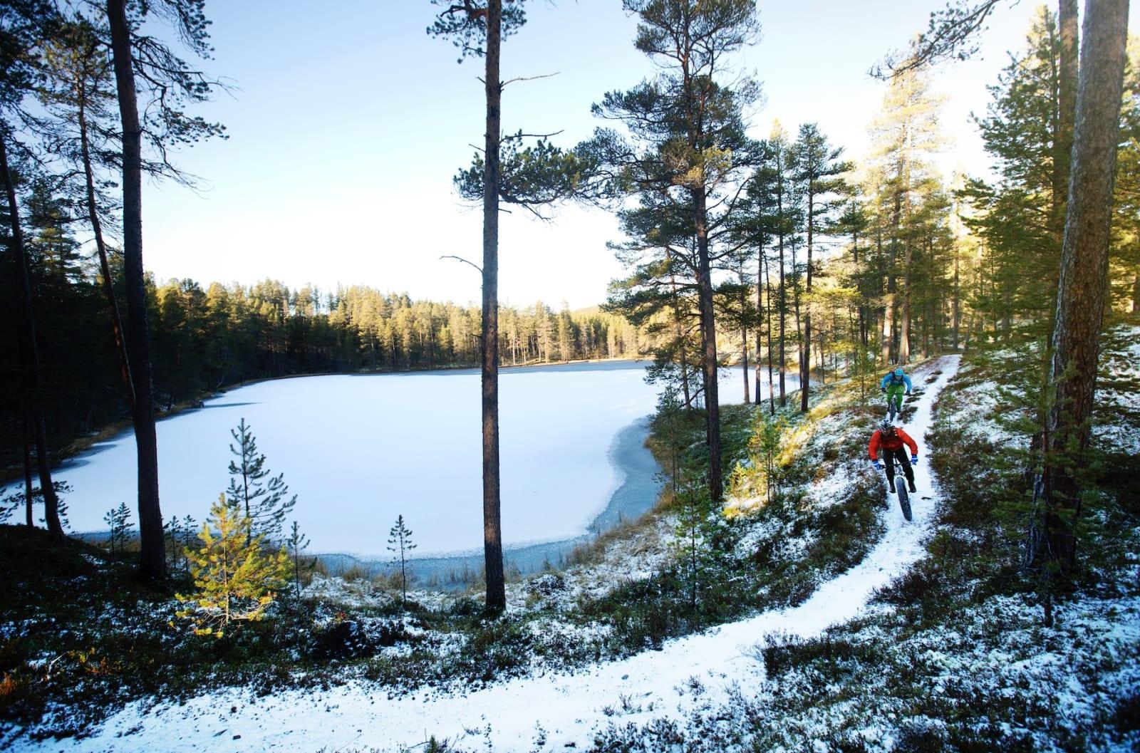 I SKYGGEN: Den varme høstsola når ikke ned i alle deler av Mølmannsdalen. Ikke at det har noe å si for kvaliteten på stien.