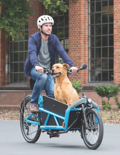 NYE TIDER: Når begynte vi med den bokstavelige versjonen av «å lufte hunden»? Foto: Evo Elsykler