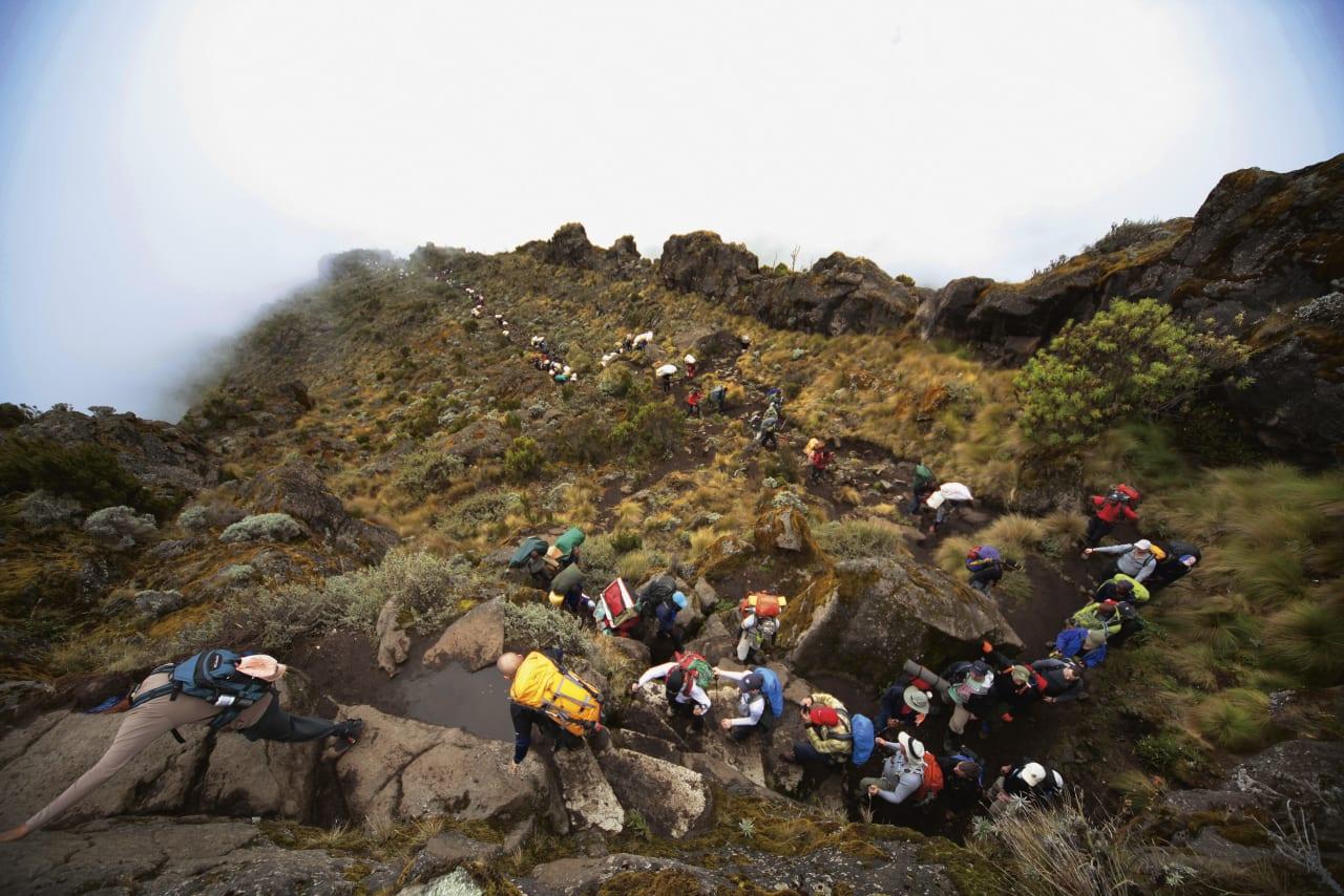 LANG, LANG REKKE: Kun halvparten av de 15.000 turistene som prøver å bestige fjellet hvert år når toppen, men norske gruppeturer legger inn god tid til akklimatisering og har postitiv innvirkning på statstikken. Foto: Matti Bernitz