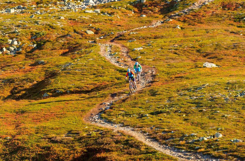 Naturlig sti er ett av flere satsingsområder for Trysil Bike Arena framover. Foto: Ola Matsson