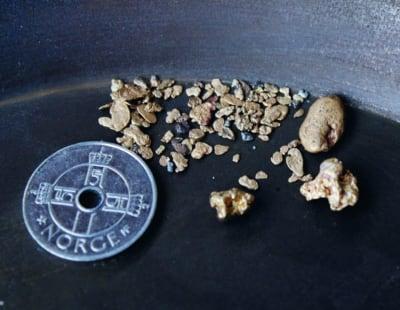 GULLKLUMP: Større gullklumper, eller nuggets som det kalles, har en mye større verdi ubehandlet enn behandlet for samlere. Med størrelse og vekt fra ett gram og oppover, kan verdien bli opp mot 10 ganger av gram verdien, hvis den ikke smeltes, men selges hel. Foto: Morten Leo Mathisen