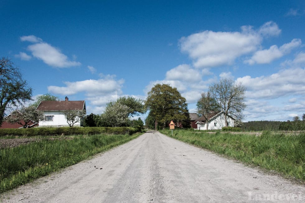SPORTSGRUS: Mellom hovedveiene ligger gårdene, og til gårdene er det anlagt vei.