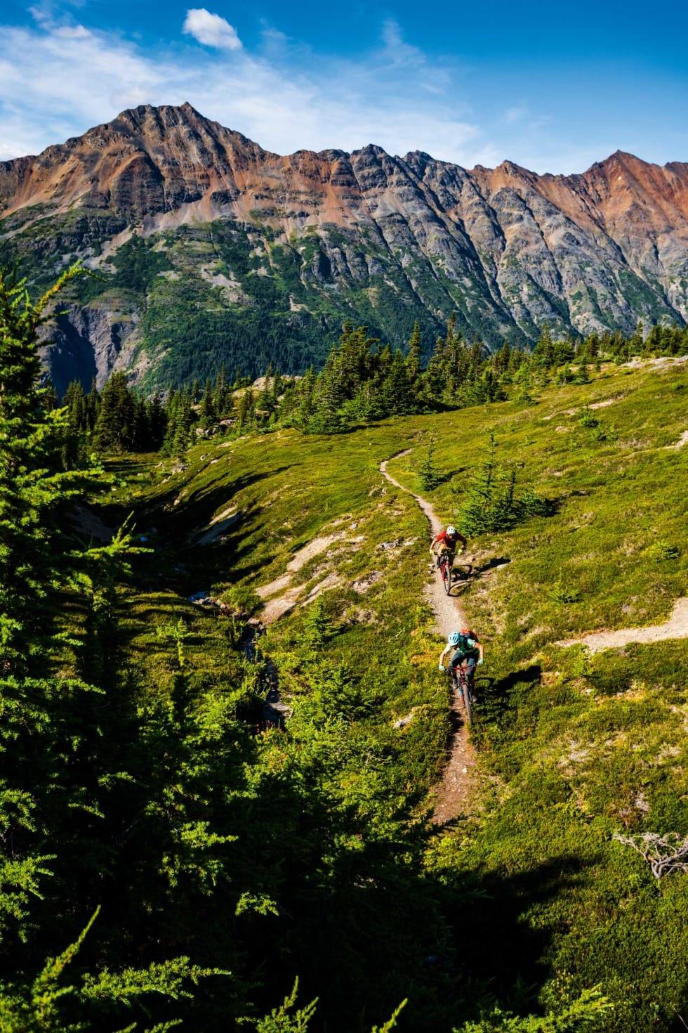 SKJÆRINGSPUNKT: Stien tar syklistene ned under tregrensa ved Maroon Mountain, hvor flere flytstier venter.