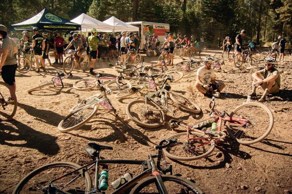BUKKERITT: Sleng fra deg sykkelen i støvet og slapp av mellom gigantiske furutrær.