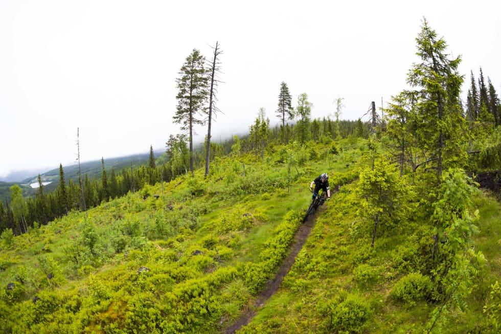 STOR VARIASJON: Trysil har litt av alt. Foto: Snorre Veggan