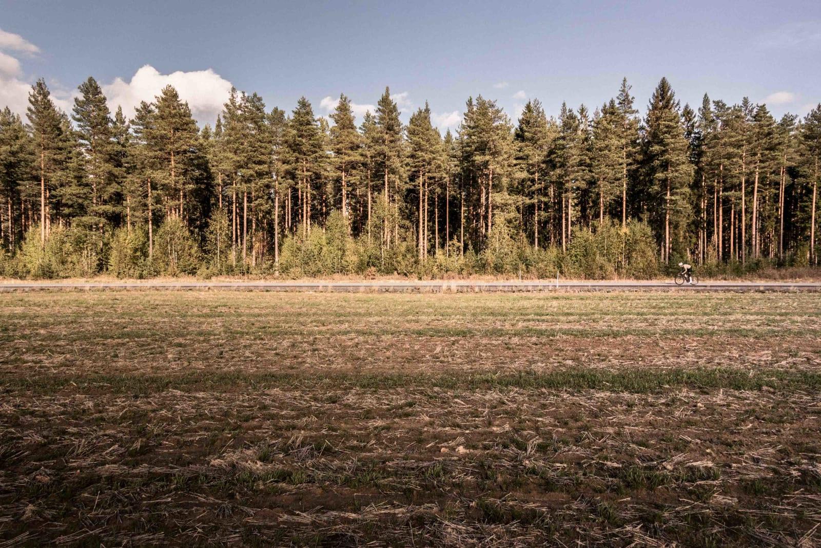 ENDELØS: Skogen ved Haslemostrekka er like endeløs som veien, trærne vokser tett i tett hele veien til Vladivostok. Peter job- ber hardt for å få strekka overstått.