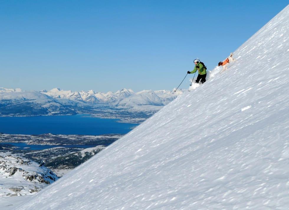 Sydvestflanken på Per Kalsatind med Dag Olsen og Alto. I bakgrunnen sees blant annet Heggmotinden. Foto: Geir Amundsen. / Toppturer rundt Bodø.