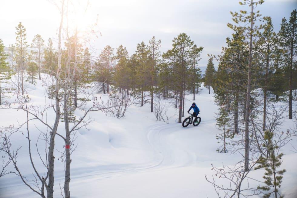 DOBBEL SESONG: Sykler du gjennom vinteren får du syklet dobbelt så mye. Foto: Sjur Melsås